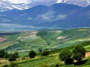 ardabil-site-139503271537
